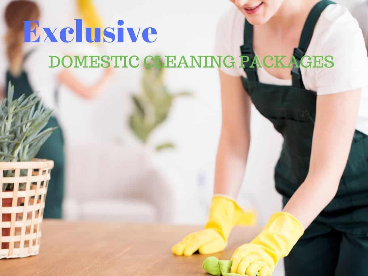 Exclusive Domestic Cleaning Packages in Hampshire